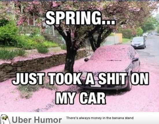 Funny Quotes About Allergies