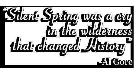 essays on silent spring by rachel carson