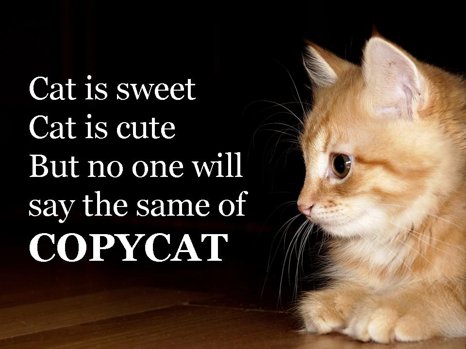 Image result for say no to copycat
