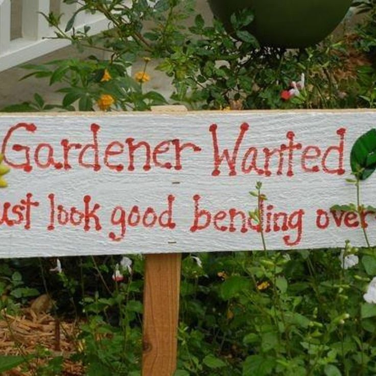 Humor Quotes And Sayings: Humorous Garden Quotes. QuotesGram