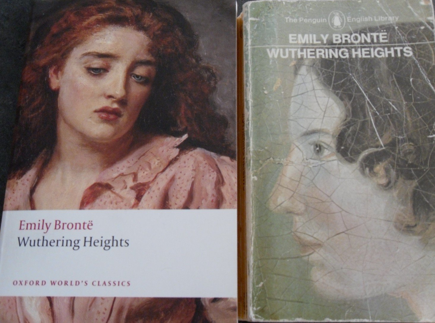 an analysis of the two characters in wuthering heights by emily bronte In her novel 'wuthering heights', emily bronte paints a picture of characters from two families: the earnshaws and the lintons she uses many.