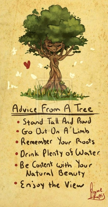 Tree Quotes About Marriage Quotesgram