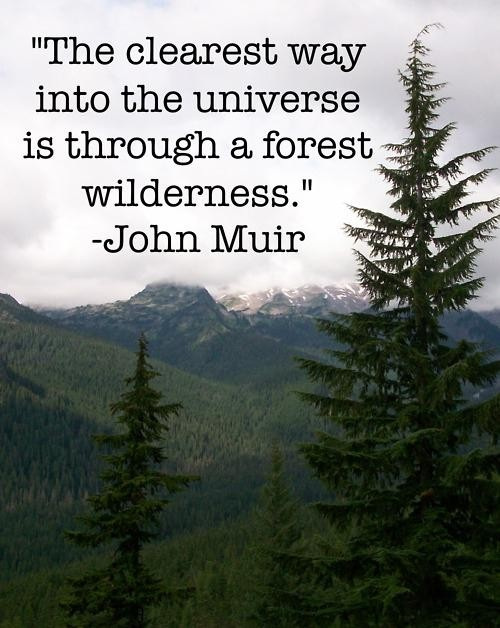 Inspirational Quotes About Camping. QuotesGram