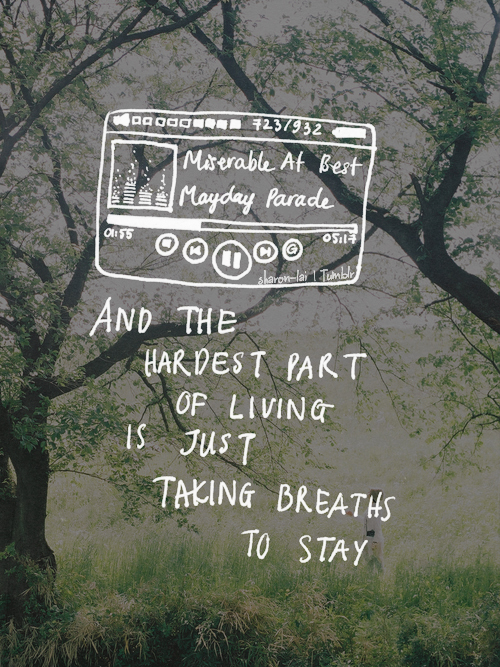 Mayday Parade Quotes Miserable At Best