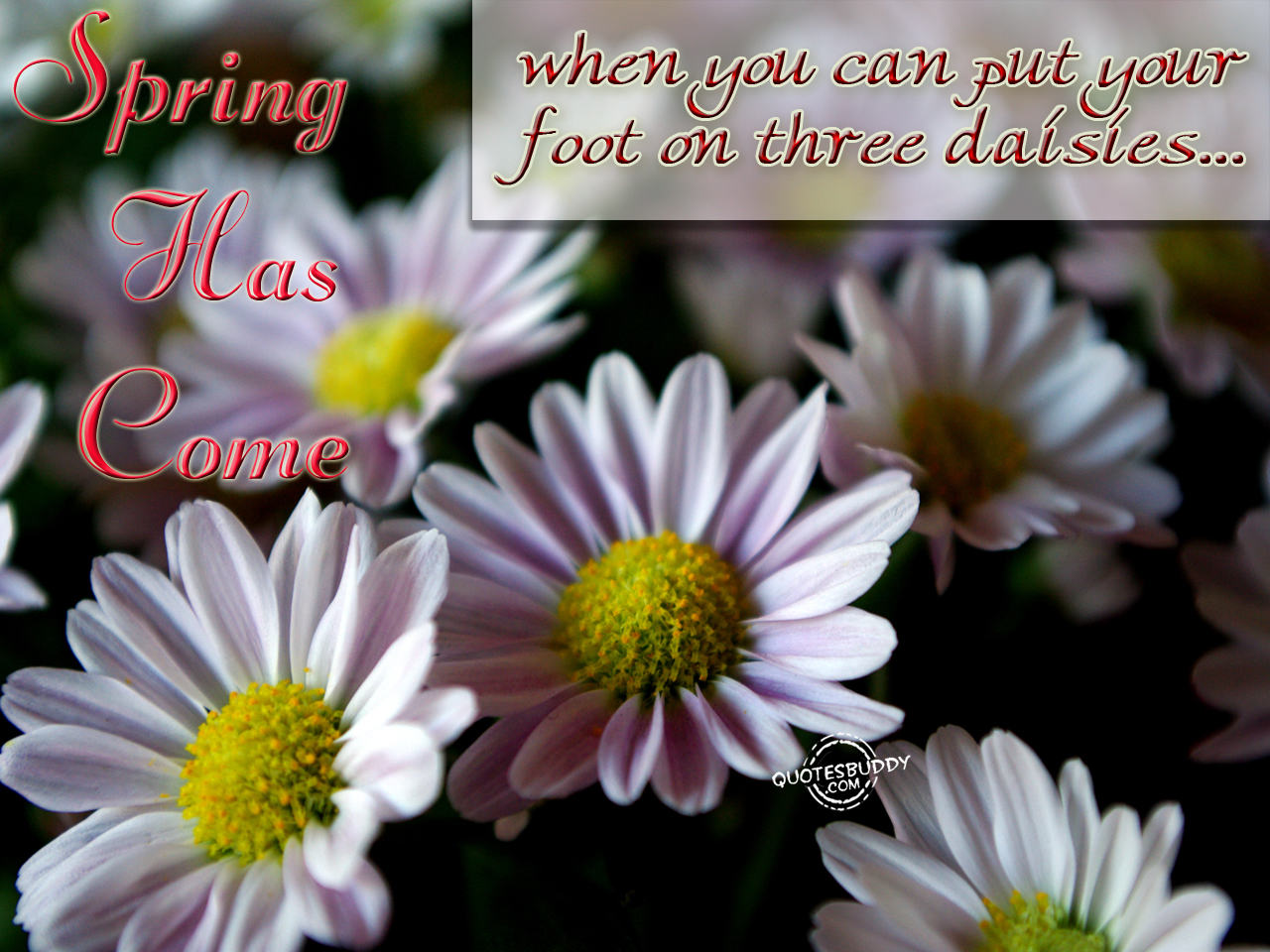 Spring Quotes: Spring Season Quotes. QuotesGram
