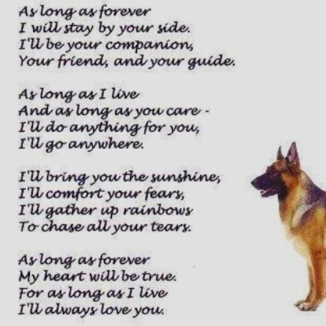 Dog In Loving Memory Quotes. QuotesGram