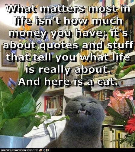 What Really Matters In Life Quotes: What Matters Most In Life Quotes. QuotesGram