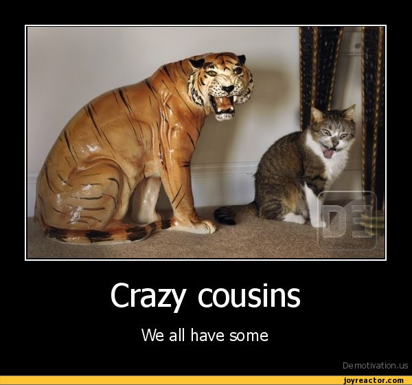 Crazy Cousin Birthday Quotes: Funny Cousin Quotes. QuotesGram