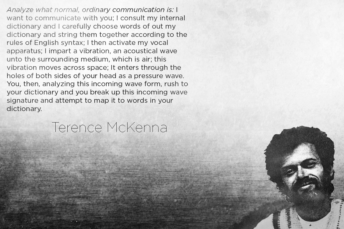 From Terence Mckenna Quotes. QuotesGram