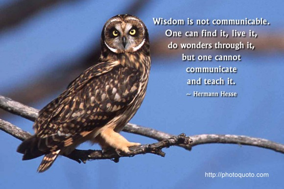 Quotes About Wisdom And Owls. QuotesGram