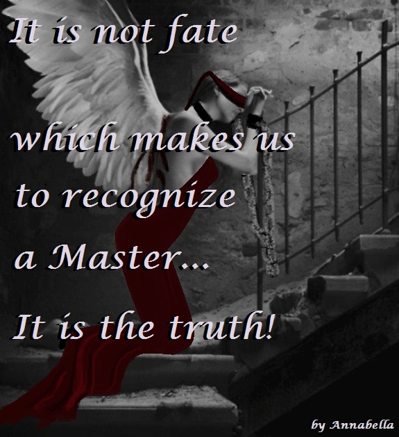 Master Dominant Quotes...