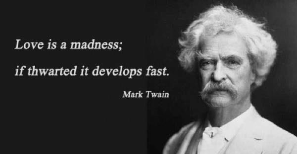 Love Mark Twain Quotes. QuotesGram
