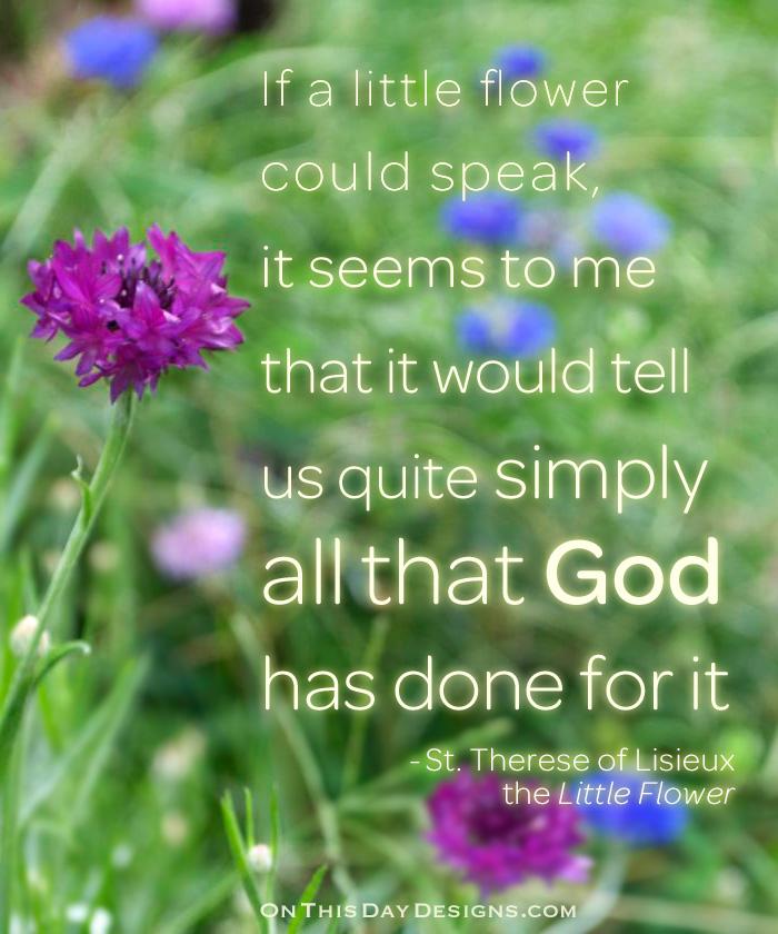 Little Flower Quotes Quotesgram