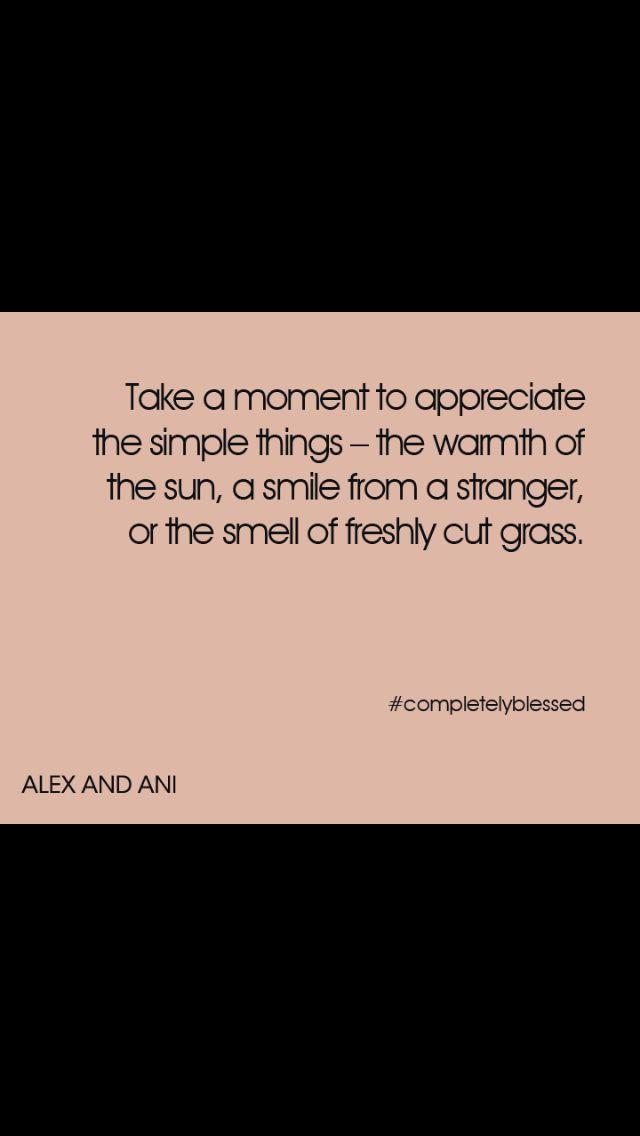 Warm Fuzzy Quotes Quotesgram