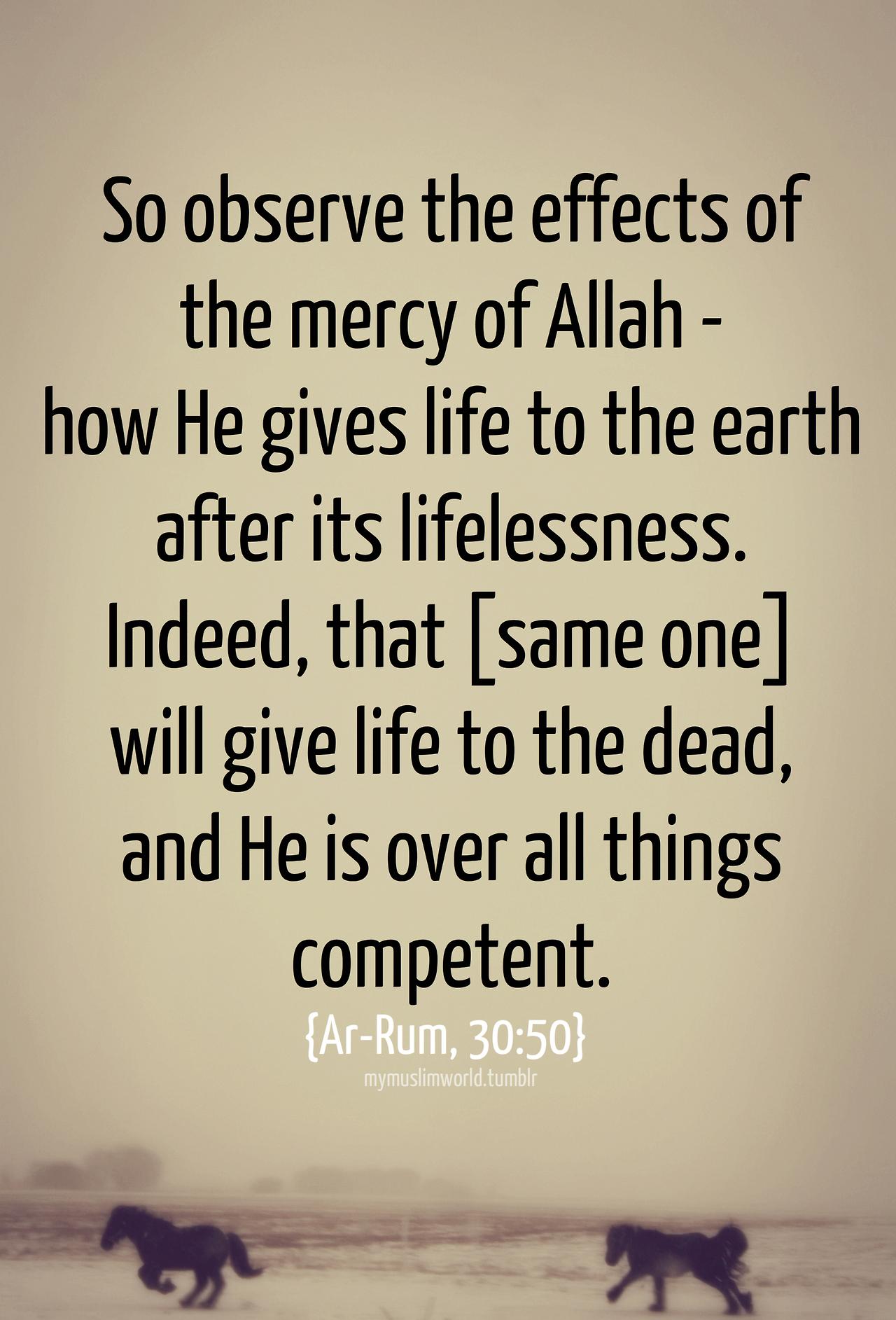 Quran Quotes In English. QuotesGram Quran Quotes In English