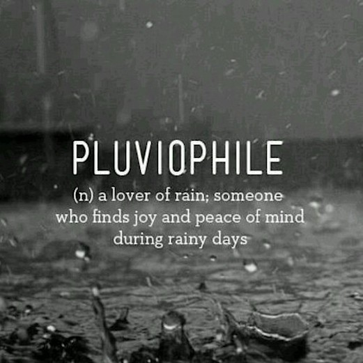 Cute Rainy Day Quotes: Cold And Rainy Quotes. QuotesGram