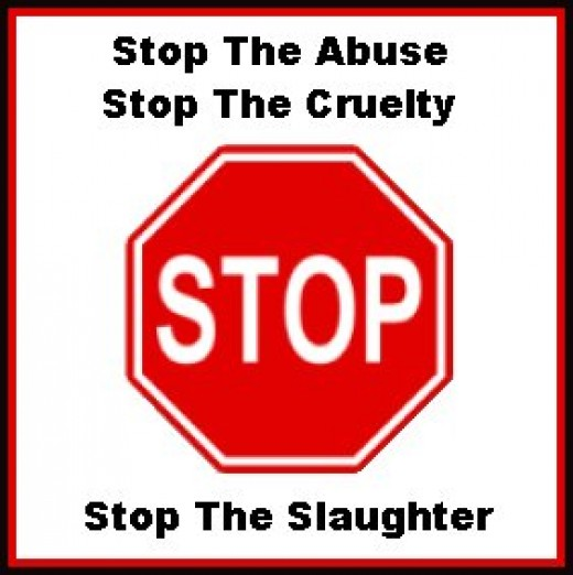 Animal Abuse Quotes By Famous People: Stop Animal Abuse Quotes. QuotesGram