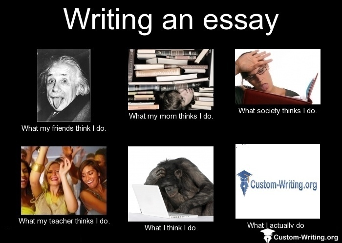 Funny essay writing site