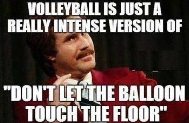 Funny Pictures Quotes Memes Funny: Volleyball Quotes And Jokes. QuotesGram