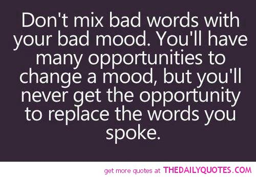 Bad Attitude Quotes And Sayings. QuotesGram