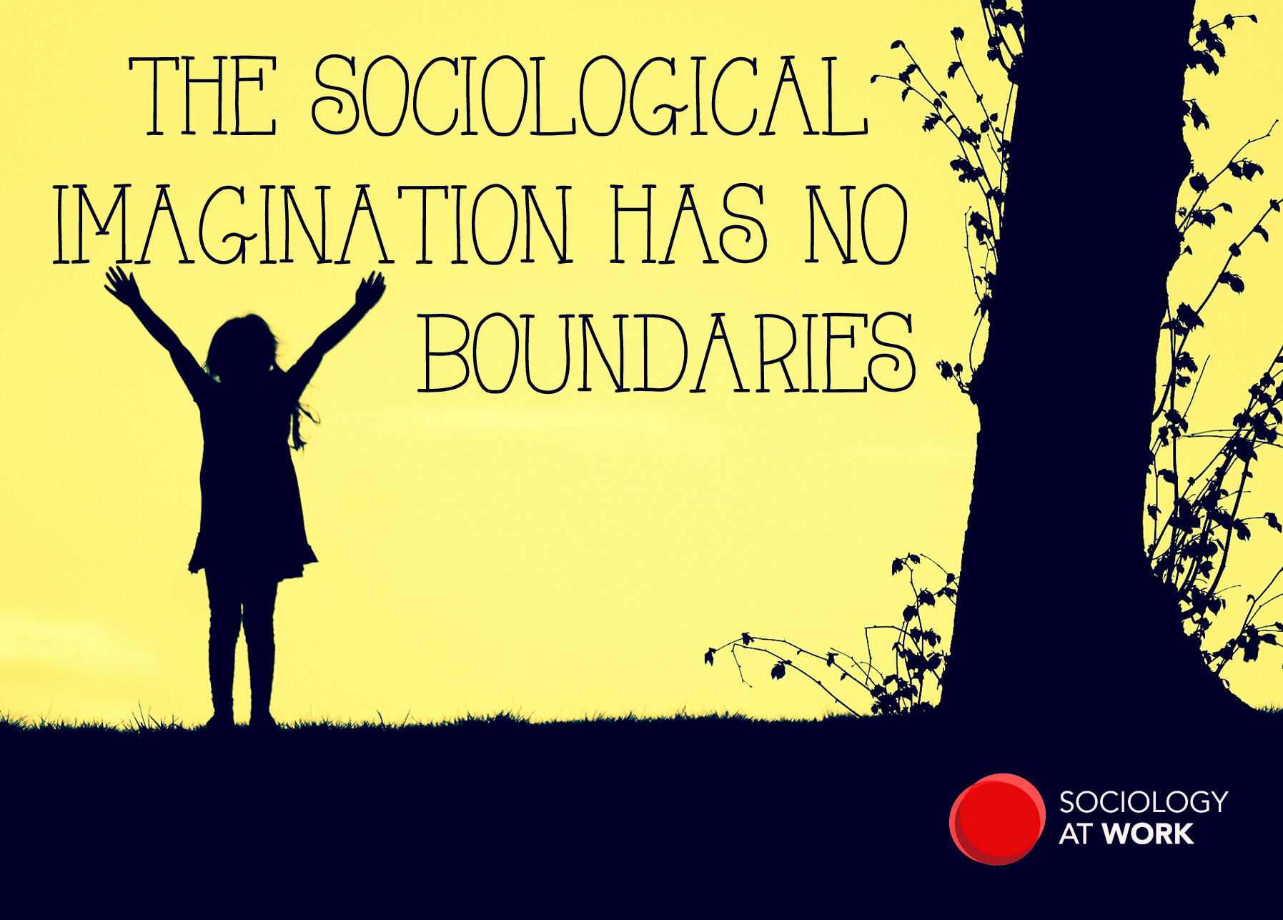 sociological imagination quotes The sociological imagination study guide contains a biography of c wright mills, literature essays, quiz questions, major themes, characters, and a full summary and analysis.