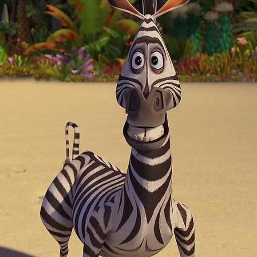 характеру картинки зебра из мадагаскара на белом фоне жених