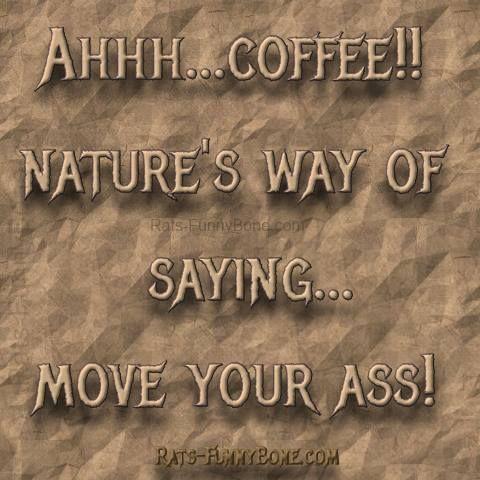Coffee And Rain Quotes. QuotesGram