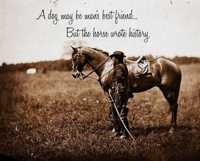 Famous Horse Quotes And Sayings. QuotesGram