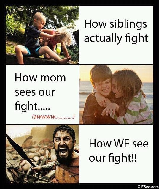 Funny Girl Fight Quotes: Quotes About Siblings Fighting. QuotesGram