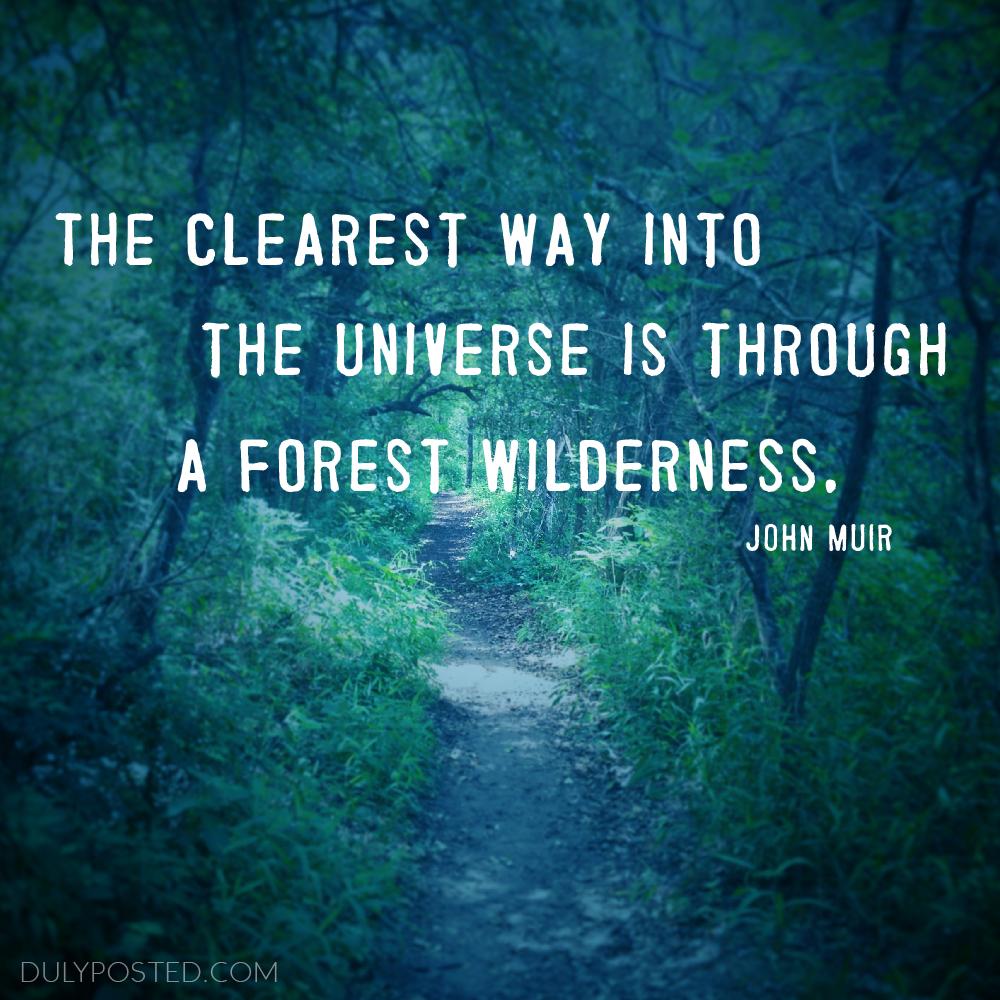 Quotes Universe Quotesgram