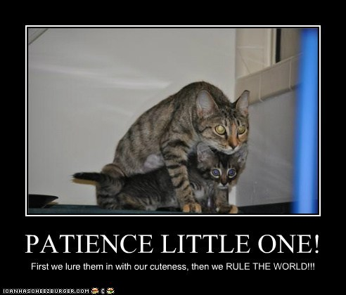 Patience Funny Quotes And Sayings. QuotesGram Funnygames Patience 1