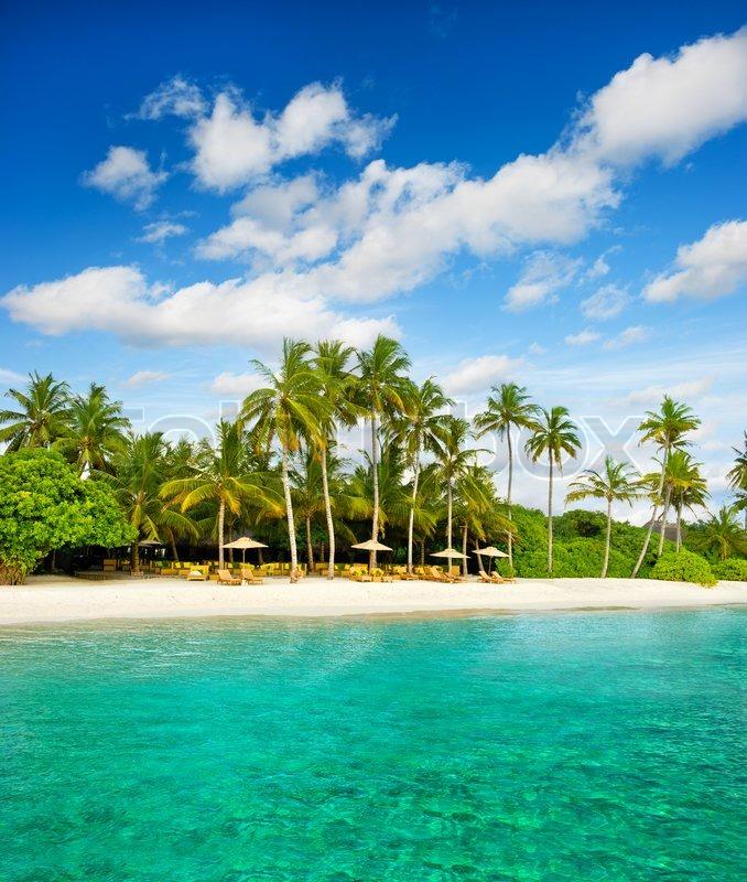 Island Beach Scenes: Tropical Island Quotes. QuotesGram