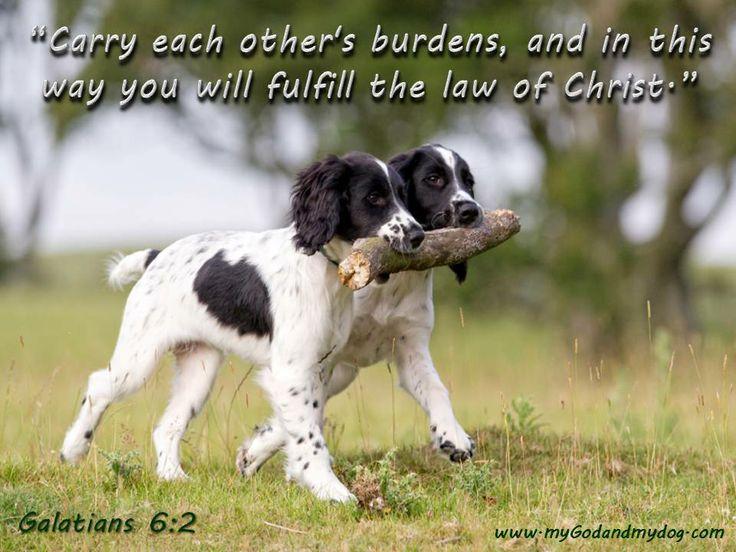 Dog Bible Quotes. QuotesGram