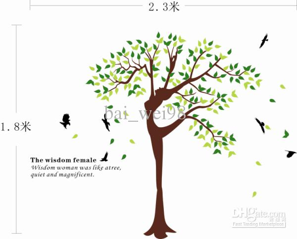 Funny Quotes About Trees. QuotesGram