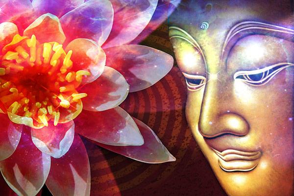 Lotus Flower Buddha Lotus Buddha Quotes. Q...