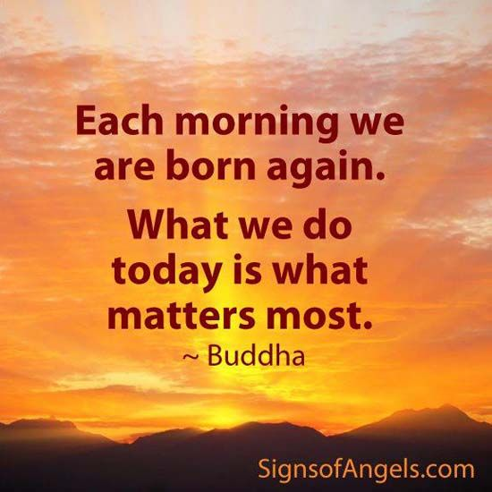Morning Buddha Quotes Quotesgram. Instagram Depression Quotes. Quotes About Quiet Strength. Morning Quotes With Coffee. Good Quotes Soccer. Work Quotes Hd. Motivational Quotes Ghandi. Disney Quotes That No One Knows. Sister Quotes From Literature