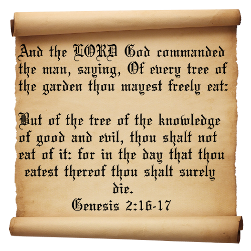 Quotes from bible genesis : Quotes from the bible genesis quotesgram