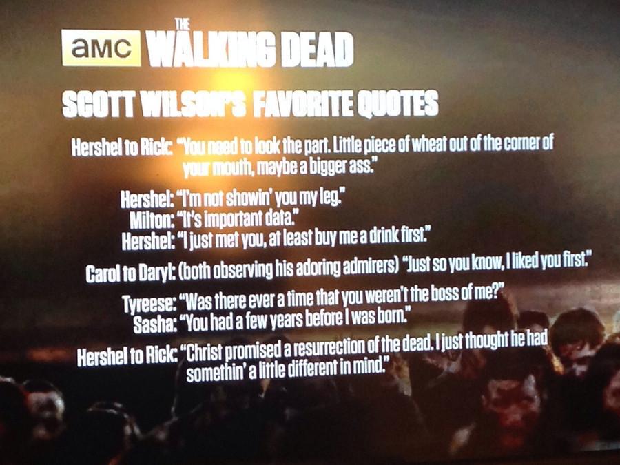 The Walking Dead Memorable Quotes. QuotesGram