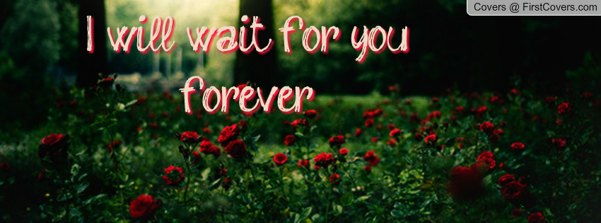 Waiting For Forever Quotes: I Will Wait For You Quotes. QuotesGram