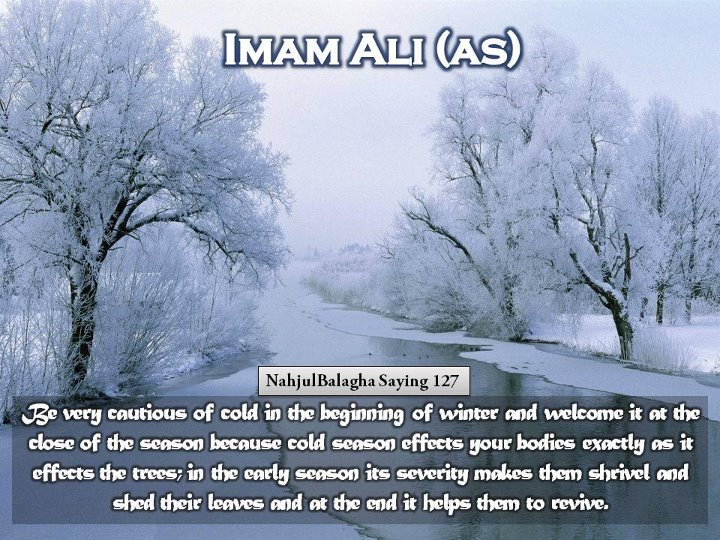 best quotes of hazrat ali in english quotesgram