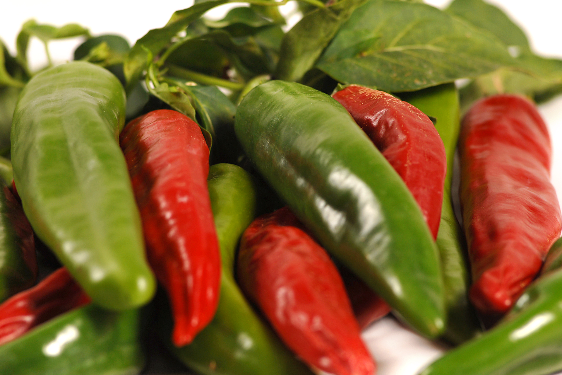 Mexican Chili Pepper Quotes. QuotesGram