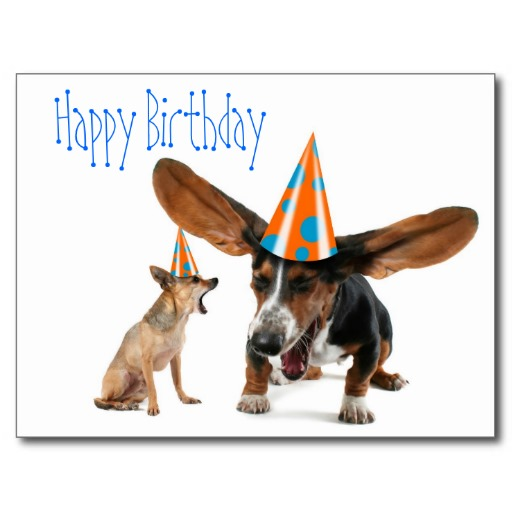 Dog Funny Birthday Quotes. QuotesGram