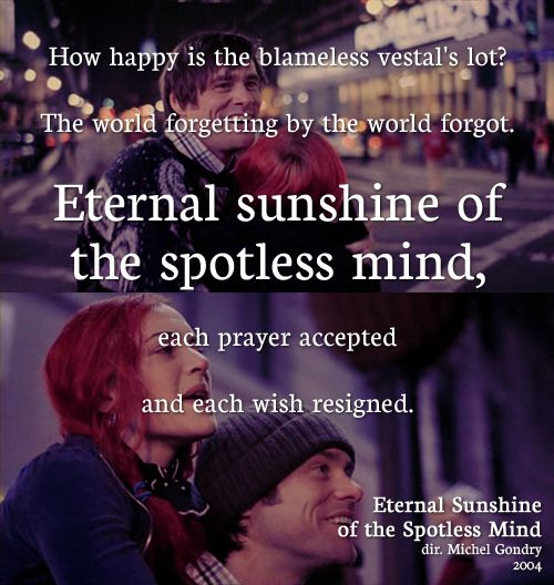 Eternal Sunshine Of The Spotless Mind Quotes Quotesgram