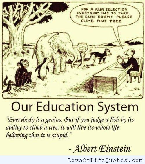 lifelong learning quotes albert einstein quotesgram