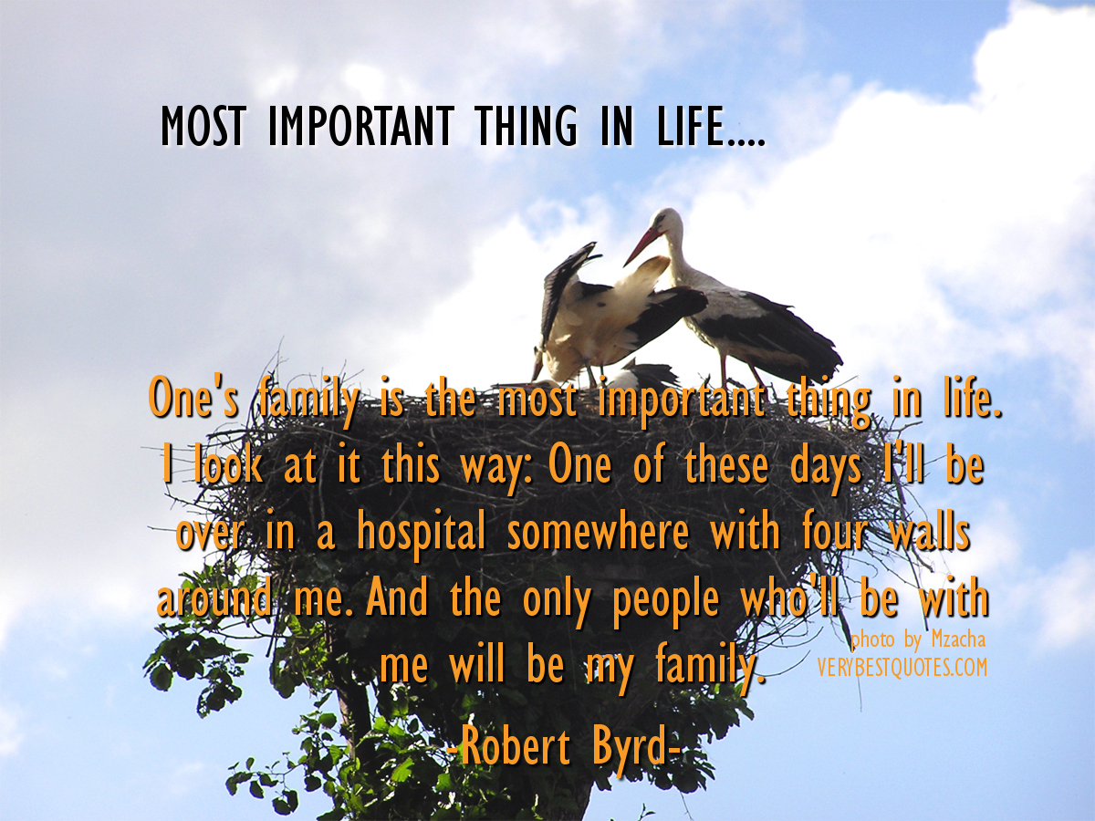 Things In Life Quotes. QuotesGram