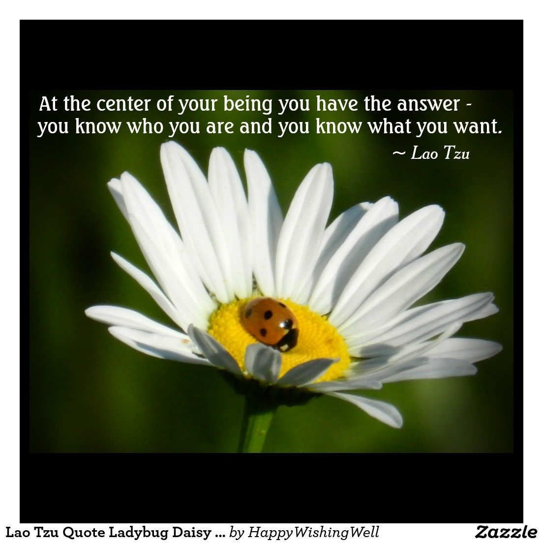 Inspirational Quotes About Positive: Inspirational Quotes Ladybug. QuotesGram