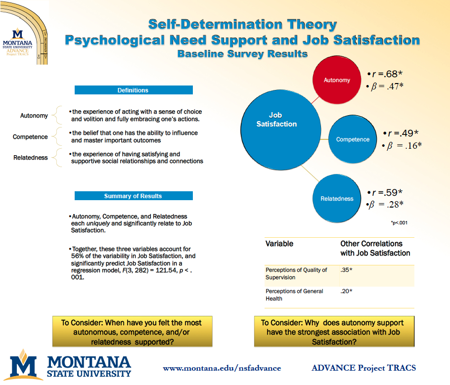 self-determination theory papers View self-determination theory research papers on academiaedu for free.