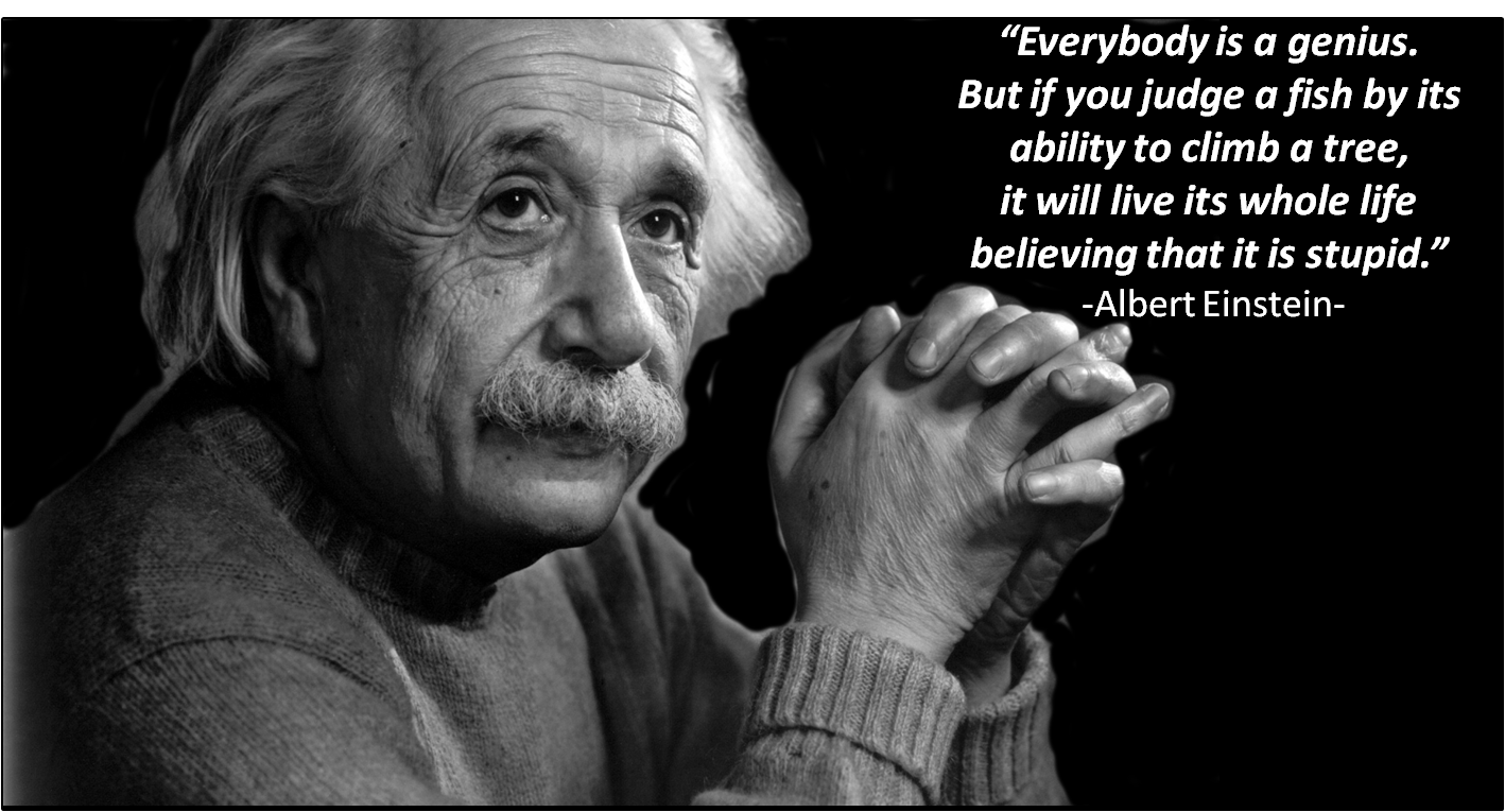 einstein and genius quote essay Are you in the mood for some motivational quotes from albert einstein today here are 19 of them.