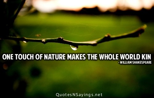 Macbeth Quotes Nature. QuotesGram