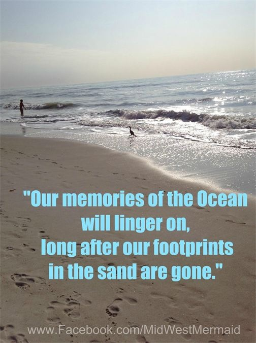 Funny Quotes About Family Vacations : Family beach vacation memory quotes quotesgram